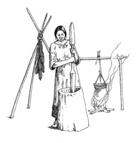 Iroquois: Matriarchy - Miss Francine's Secondary 4 History